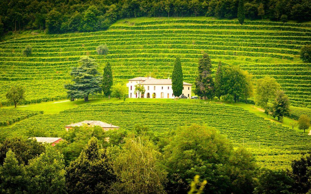 Toscana slår det mesta